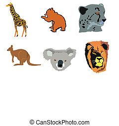 cheetah,kangaroo,koala,lion,antelope,beaver
