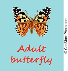 white,black,tatoo,background,body,isolated,beautiful,design,nature,blue,beauty,butterfly,art,pattern,summer,decoration,yellow,graphic,natural,flower,shape,image,leaf,element,floral,wings,rendering,change,silhouette,group,single,computer,wildlife,gray,purple,path,print,ornamental,insect,formal,animals,digitally,antenna,themes,spread,invertebrate,illustrate,set,orange,product
