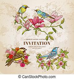 -, vector, set, hand-drawn, bloemen, vogels, illustratie, ouderwetse