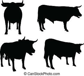 -, vector, silhouette, verzameling, vee