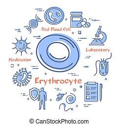 -, vektor, erythrocyte, bakterie, begrepp, virus, ikon