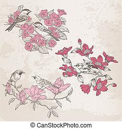 -, vetorial, desenho, retro, ilustrações, scrapbook, flores, pássaros