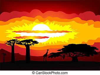 -, vetorial, pôr do sol, áfrica