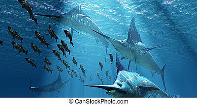 Blauer marlin ozeanfisch. Der blaue marlin ist ein raubtier