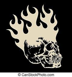 003, cranio