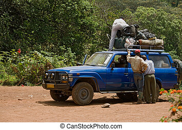 003, transporte, safari, vehículo