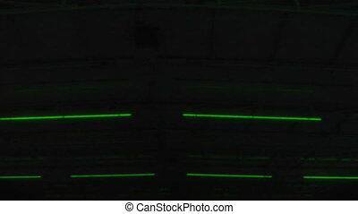 02, lekki, neon