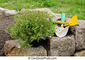 02, plantar, arbusto