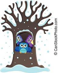 1 , κουκουβάγια , θέμα , δέντρο , εικόνα