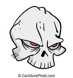 1, 頭骨