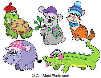 1, animais, inverno, cobrança, roupas