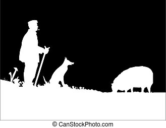 1, berger, silhouette, chien