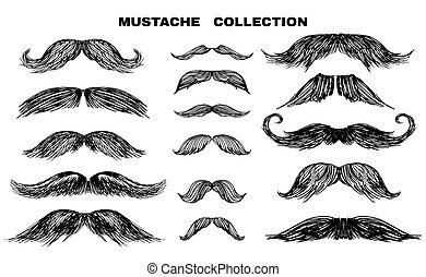 1, bigote, colección