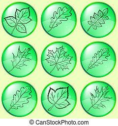 1, botões, folhas, jogo, plantas