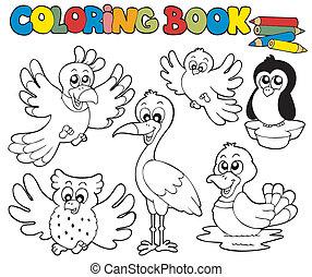 1, carino, libro colorante, uccelli