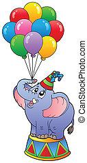 1, circo, balões, elefante