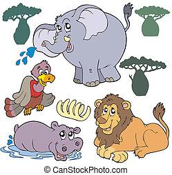 1, conjunto, animales, africano