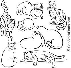 1, designs-set, lijn, kat