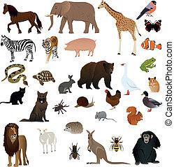 1, dieren