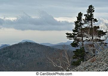 1, góra, tajga, krajobraz