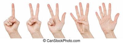 1, gesti, conteggio, 5, mano