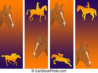 1, koń biegi