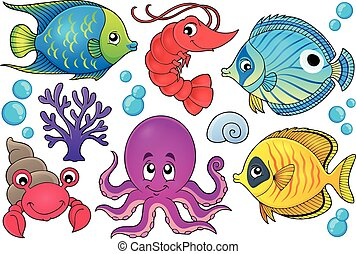 1, koralle, fauna, thema, bild