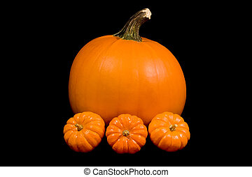 1 large and 3 little pumpkins