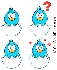 1., oiseau, caractère, bleu, collection