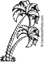 1, palma, tema, árvore, desenho
