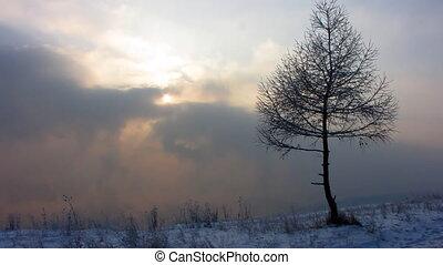 1, paysage hiver