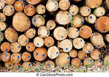 1, pilha, madeira