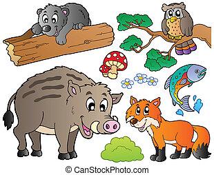 1, sæt, dyr, skov, cartoon