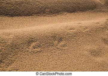 1, sable