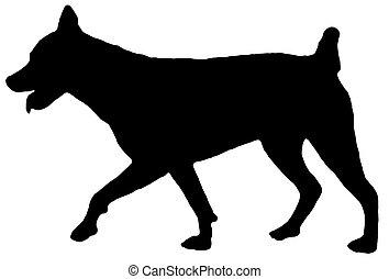 1, silhouette, chien