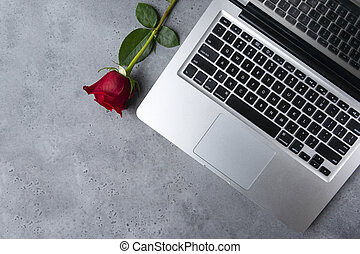 1 silver laptop keyboard on gray background, red rose