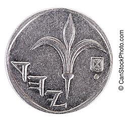 1, têtes, frontal, -, isolé, shekel