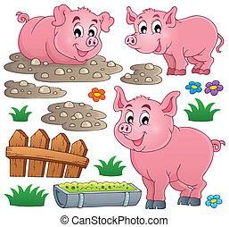 1, tema, colección, cerdo