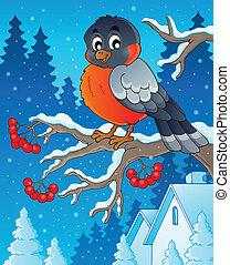 1, tema, inverno, imagem, pássaro