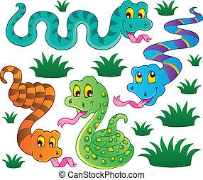 1, tema, vario, serpenti, collezione