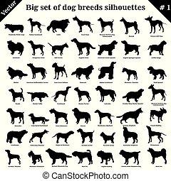 1, vector, siluetas, perros