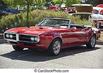 1, voiture, cabriolet, muscle
