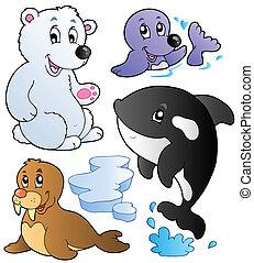 1, wintertime, animais, cobrança