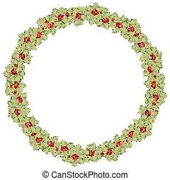 10, 花冠, eps, 輪, 矢量, holly., 聖誕節