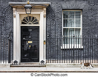 The cat named Larry is the 10 Downing Street cat and is Chief Mouser to the Cabinet Office. Larry is a brown and white tabby.