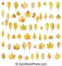 10, ensemble, coloré, grand, leaves., 60, eps, automne, vecteur