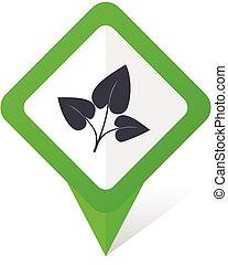 10, fyrkant, blad, eps, vektor, grön fond, vit, pekare, shadow., ikon