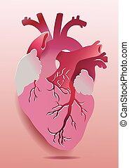 10, illustration., coração, eps, realístico, vetorial