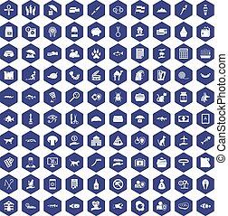 100 cat icons hexagon purple