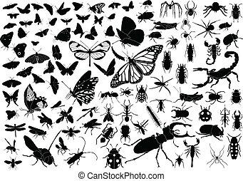 100, insectos